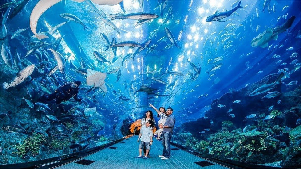 Family inside a walk through aquarium Radiant Fish world