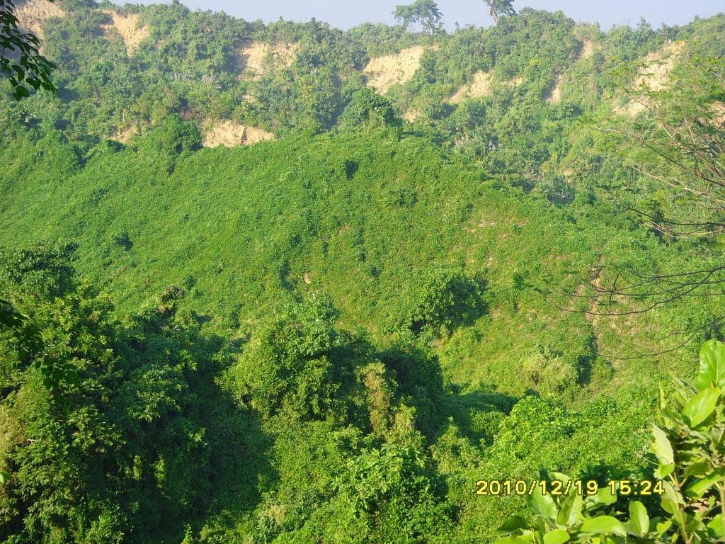 Hillside at Cox's Bazar Marine Dr.